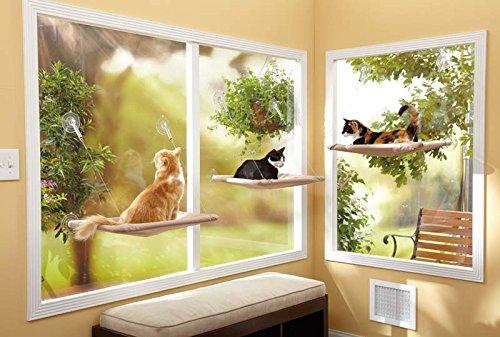 Cat Window Perch Reviews