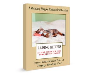 raising kittens book