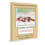 raising happy kittens ebook