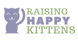 Raising Happy Kittens
